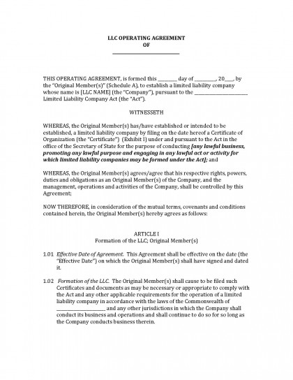 Operating Agreement Example Aprilonthemarchco - Nj llc operating agreement template free