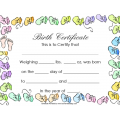 Blank-Birth-Certificate.pdf-1.png
